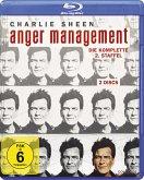 Anger Management - Die komplette 2. Staffel (2 Discs)