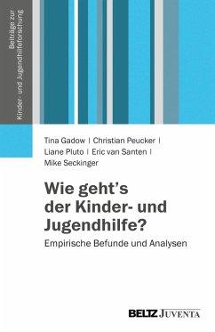 Wie geht's der Kinder- und Jugendhilfe? (eBook, PDF) - Gadow, Tina; Seckinger, Mike; Pluto, Liane; Peucker, Christian; Santen, Eric van