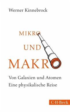 Mikro und Makro (eBook, ePUB) - Kinnebrock, Werner