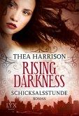 Schicksalsstunde / Rising Darkness Bd.2