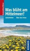 Was blüht am Mittelmeer? (eBook, ePUB)
