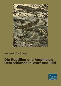 Die Reptilien und Amphibien Deutschlands in Wort und Bild - Lachmann, Hermann