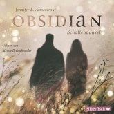 Schattendunkel / Obsidian Bd.1 (MP3-Download)
