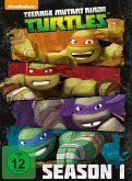 Teenage Mutant Ninja Turtles - Season 1 (4 Discs)