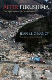 After Fukushima: The Equivalence of Catastrophes