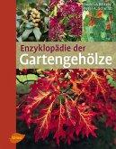 Enzyklopädie der Gartengehölze (eBook, PDF)