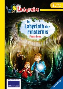 Im Labyrinth der Finsternis - Lenk, Fabian