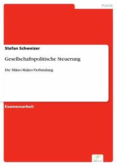 Gesellschaftspolitische Steuerung (eBook, PDF) - Schweizer, Stefan