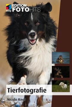 Tierfotografie (eBook, ePUB) - Knor, Nicole