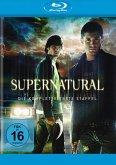 Supernatural - Die komplette 1. Staffel