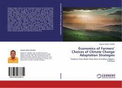 Economics of Farmers' Choices of Climate Change Adaptation Strategies