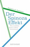 Der Spinoza-Effekt (eBook, ePUB)