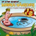 Warum torkeln Taumelkäfer?, 1 Audio-CD / Die kleine Schnecke, Monika Häuschen, Audio-CDs Nr.38