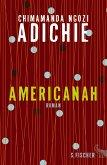 Americanah (eBook, ePUB)