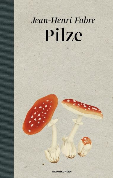 Pilze - Fabre, Jean-Henri