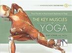 The Key Muscles of Yoga (eBook, ePUB)