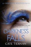 Darkness Falls (Immortal Beloved Book Two) (eBook, ePUB)
