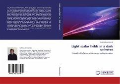 Light scalar fields in a dark universe