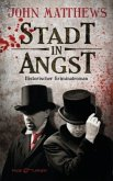 Stadt in Angst / Finley Jameson Bd.1