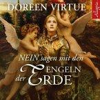 Nein sagen mit den Engeln der Erde, 3 Audio-CDs