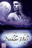 Dunkler Wolf / Dark Carpathians Bd.25