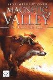 Die Flucht der Fünf / Magnetic Valley Bd.1 (eBook, ePUB)