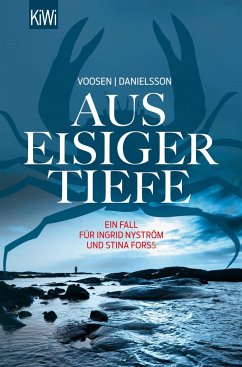 Aus eisiger Tiefe / Ingrid Nyström & Stina Forss Bd.3 - Voosen, Roman; Danielsson, Kerstin S.