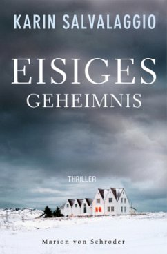 Eisiges Geheimnis / Macy Greeley Bd.1 - Salvalaggio, Karin