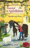 Hannah und Pinto / Ponyhof Apfelblüte Bd.4