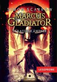 Straßenkämpfer / Marcus Gladiator Bd.2 (eBook, ePUB)