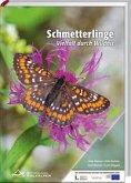 Schmetterlinge im Nationalpark Kalkalpen