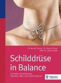 Schilddrüse in Balance