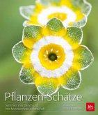 Pflanzen-Schätze