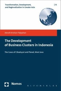 The Development of Business Clusters in Indonesia - Pakpahan, Aknolt Kristian