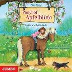 Lotte und Goldstück / Ponyhof Apfelblüte Bd.3 (1 Audio-CD)