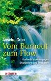 Vom Burnout zum Flow (Restexemplar)