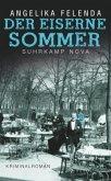 Der eiserne Sommer / Kommissär Reitmeyer Bd.1