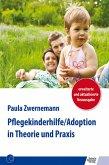 Pflegekinderhilfe/Adoption in Theorie und Praxis (eBook, PDF)