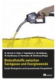 Biokraftstoffe zwischen Sackgasse und Energiewende (eBook, PDF)