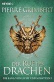 Der Ruf des Drachen / Die Saga von Licht und Schatten Bd.2 (eBook, ePUB)