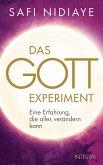 Das Gott-Experiment (eBook, ePUB)