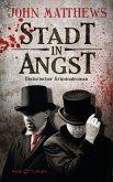 Stadt in Angst / Finley Jameson Bd.1 (eBook, ePUB)