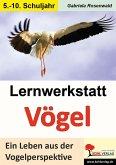 Lernwerkstatt Vögel (SEK) (eBook, PDF)