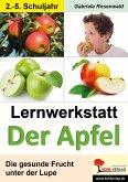 Lernwerkstatt Der Apfel (eBook, PDF)