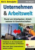 Unternehmen & Arbeitswelt (eBook, PDF)