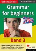 Grammar for beginners (eBook, PDF)