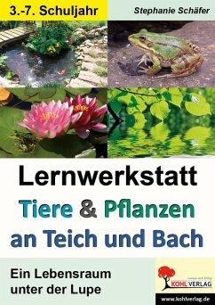 Lernwerkstatt Tiere & Pflanzen an Teich und Bach (eBook, PDF) - Schäfer, Stephanie