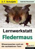 Lernwerkstatt Die Fledermaus (eBook, PDF)