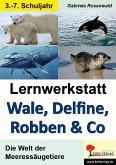 Lernwerkstatt Wale, Delfine, Robben & Co. (eBook, PDF)