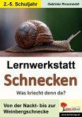 Lernwerkstatt Schnecken (eBook, PDF)